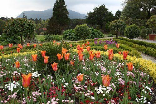 preventivo giardino
