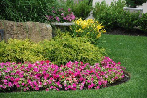 La progettazione di aiuole per il tuo giardino consigli e for Progetto aiuole per giardino