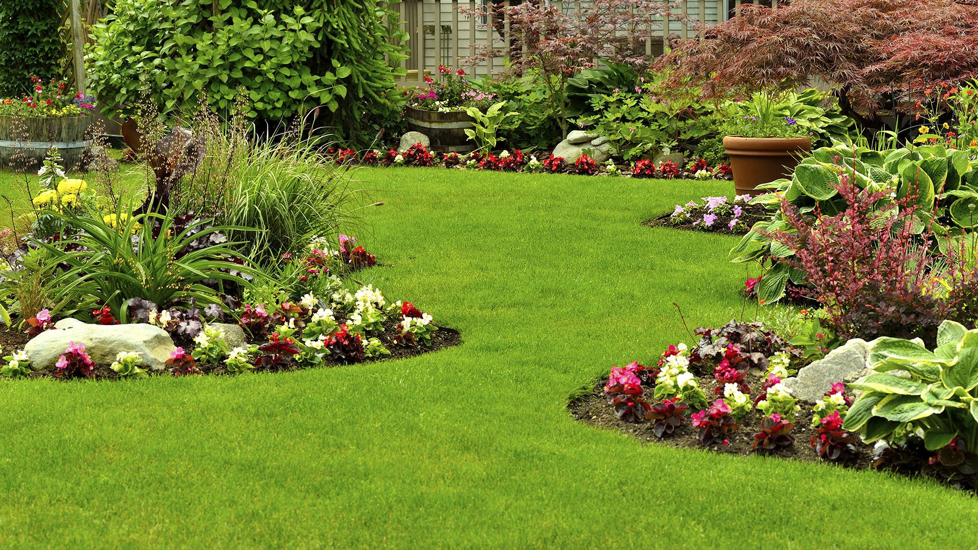 Come e quando procedere alla semina del prato - Quando seminare erba giardino ...