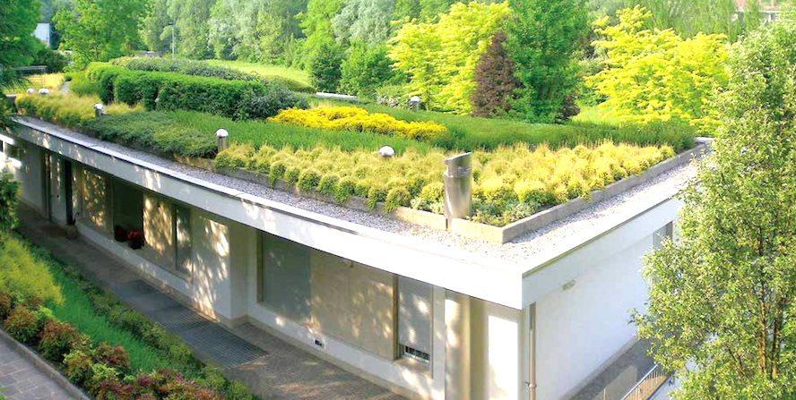 I giardini pensili per un area verde alla portata di tutti for Progettazione giardini pensili