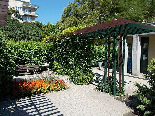Il giardiniere per la tua casa di roma informazioni utili for Giardiniere milano