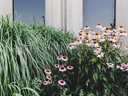 giardinieri bergamo