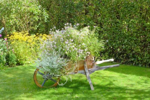 giardiniere firenze