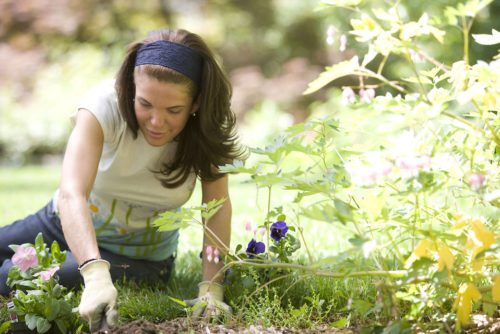 giardiniere padova