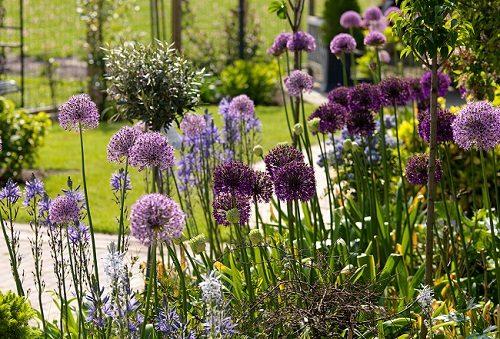 giardiniere brescia